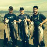 Ocean Coho Salmon