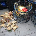 crabbing in oregon with T-Sea Charters 1
