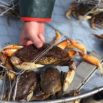 crabbing in oregon with T-Sea Charters 3